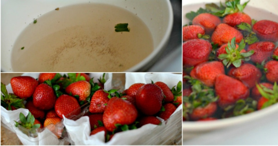 When soaked in vinegar and patted dry, strawberries and other berries stay fresh longer.
