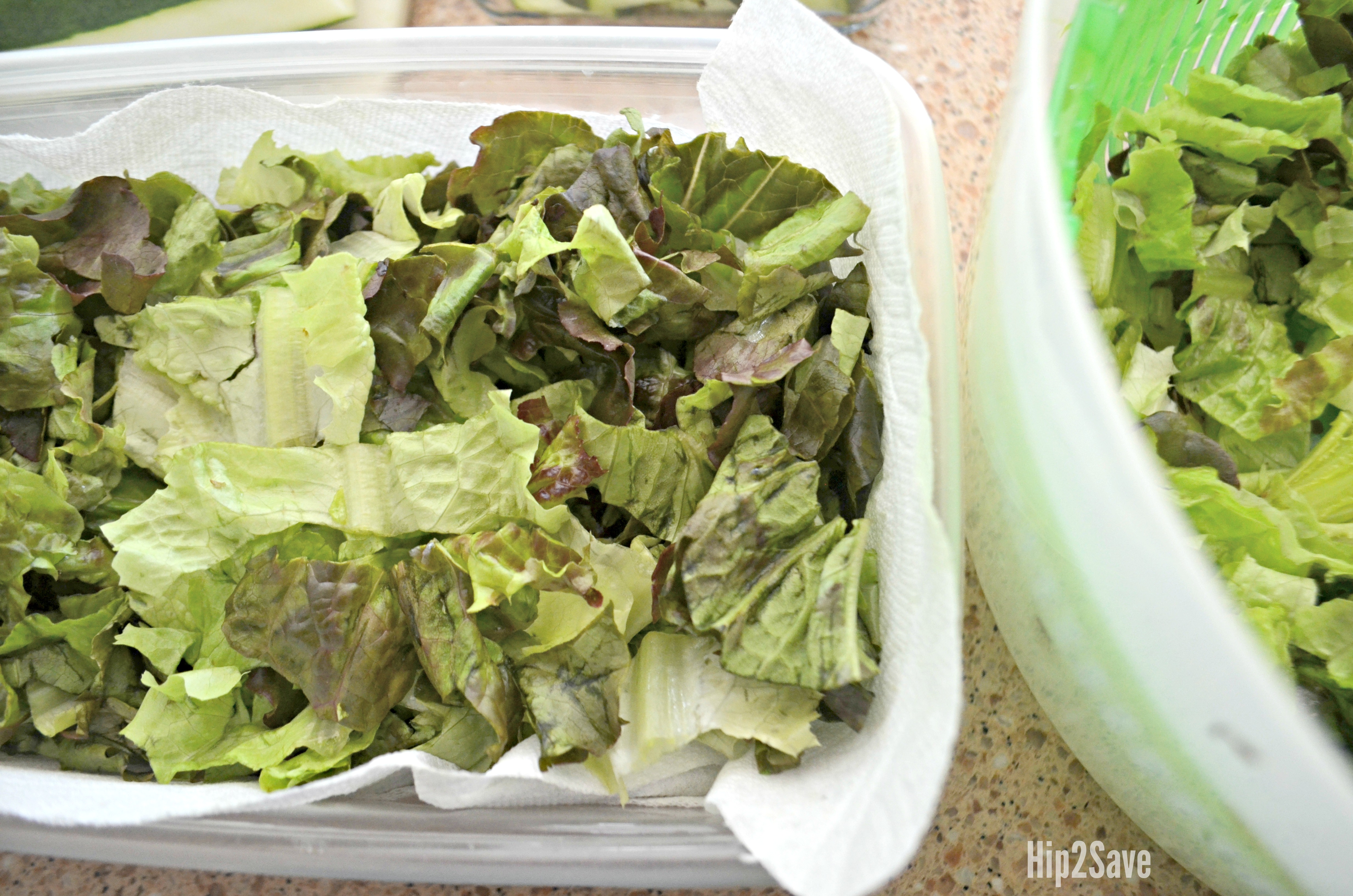 Keep lettuce fresh longer by lining a container with paper towels.