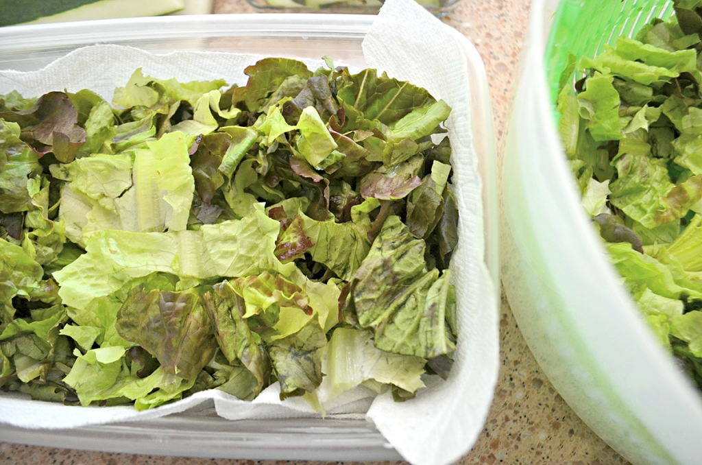 lettuce in bowl on the counter