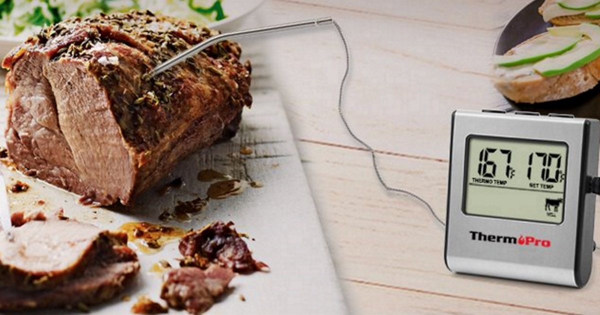 thermopro thermometer for meats