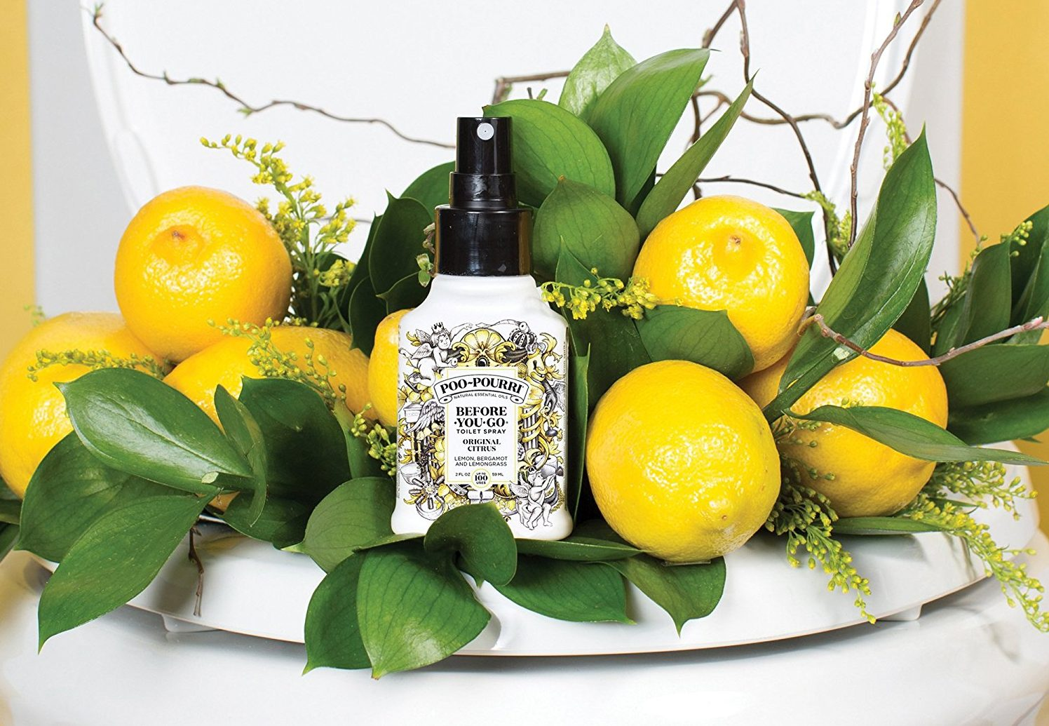 favorite poop related products - poo-pouri