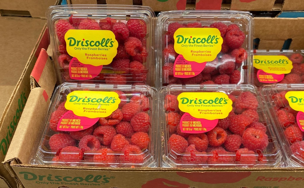 raspberries in crates