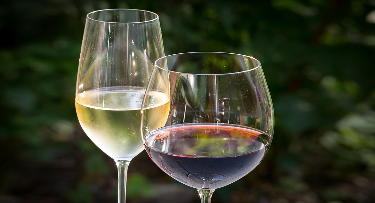 white and red wines in glass