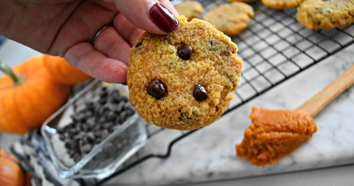 Keto Pumpkin Chocolate Chip Cookies – holding a cookie