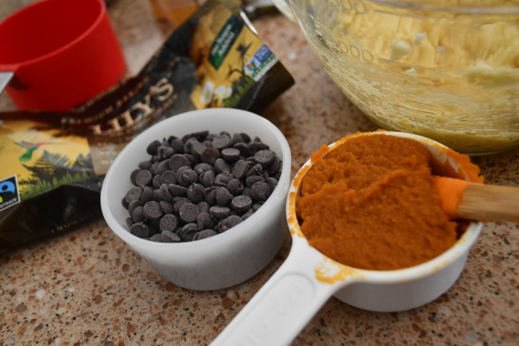 chocolate chips and pumpkin
