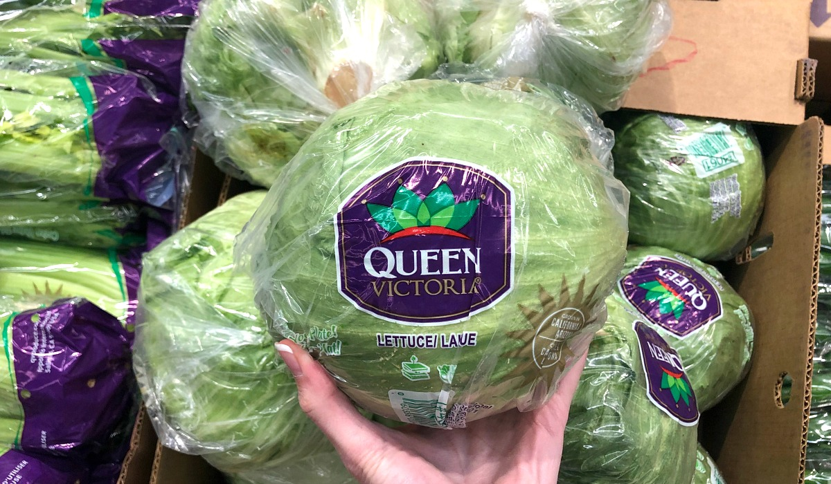cheapest keto staples — iceberg lettuce at aldi