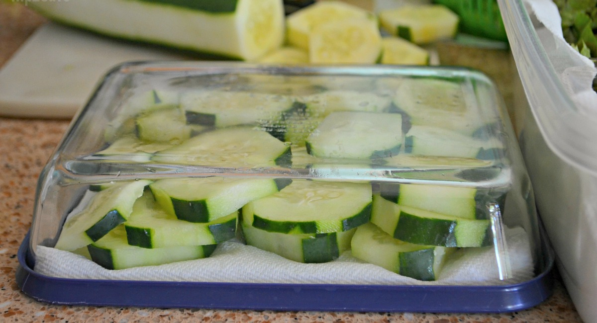 sliced cucumber in tupperware with a piece of paper towel for how to keep vegetables fresh