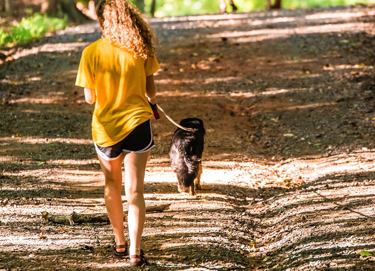 girl walking dog on hiking trail