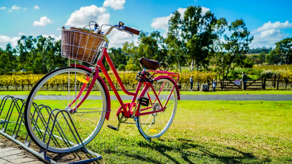 red bicycle at park