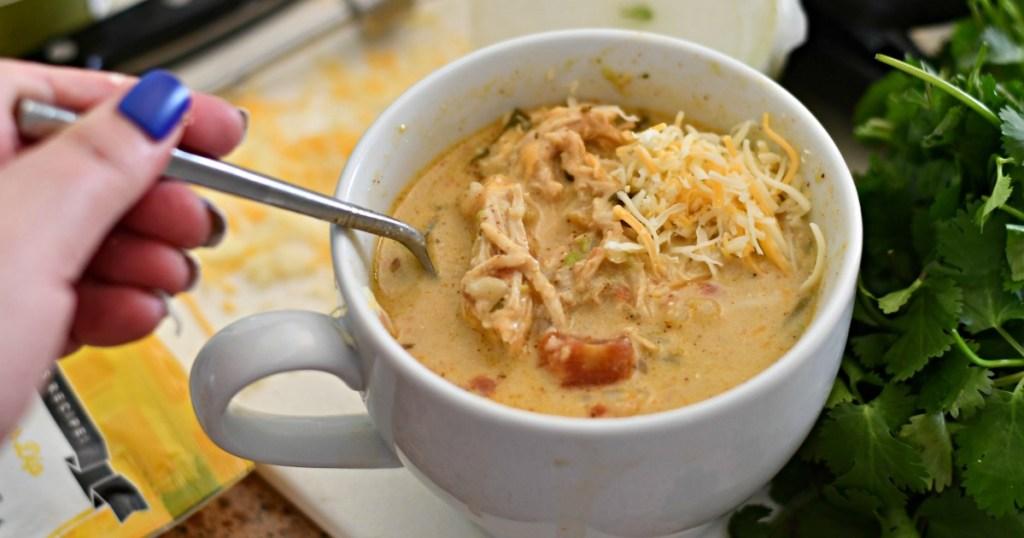 bowl of keto chicken salsa soup