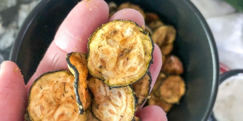 Get Your Crunch on with Cool Ranch & Vinegar Flavored Keto Zucchini Chips