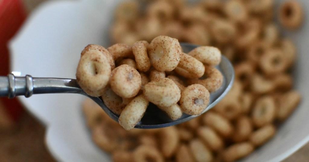 spoonful of Magic Spoon keto cinnamon cereal