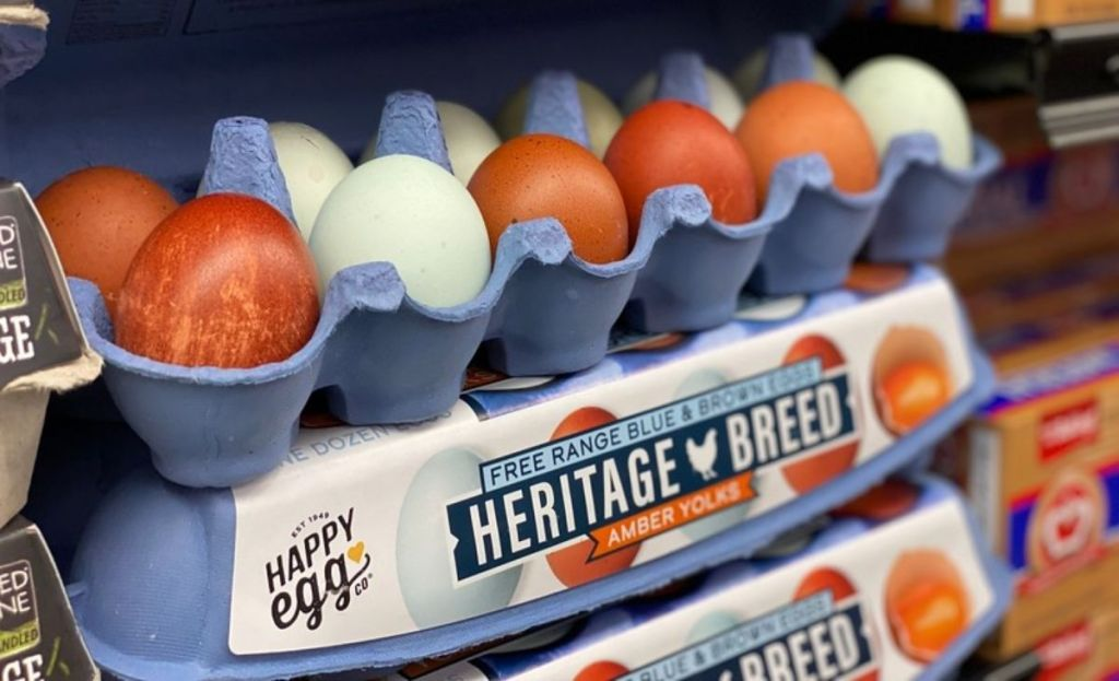 Brown and blue free-range eggs in a carton at the store