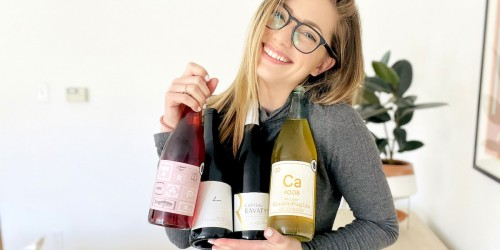 The 5 Best Keto Wines to Buy… Cheers!
