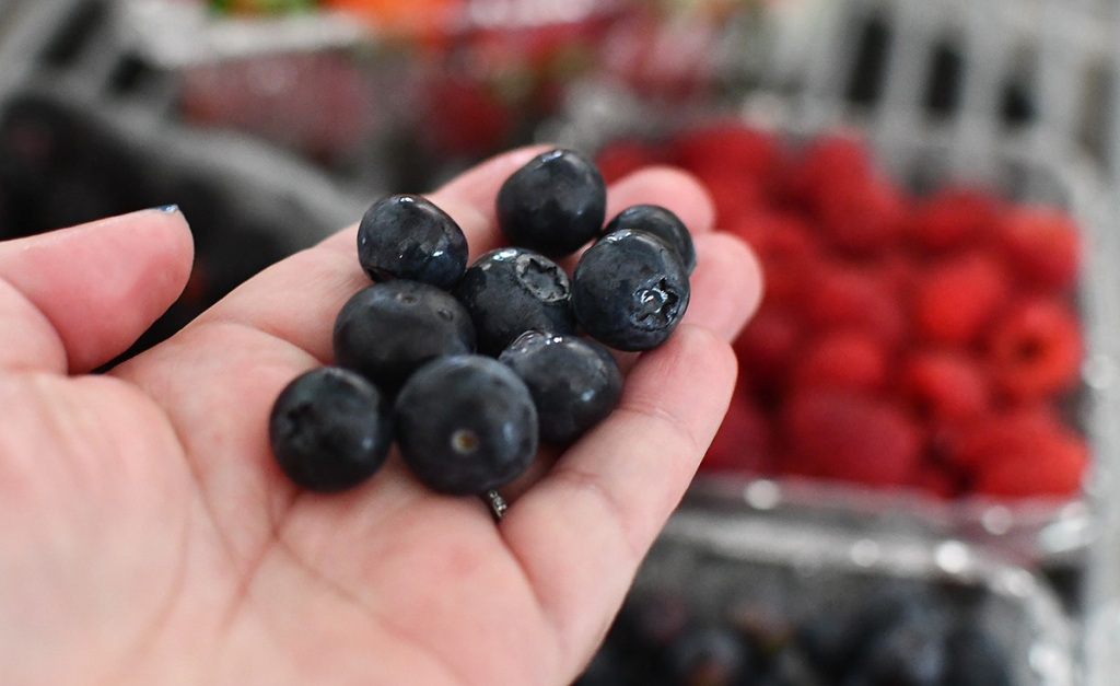 hand with blueberries