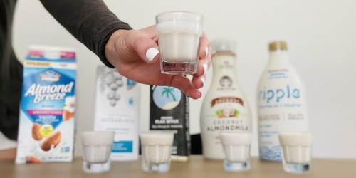 I Tested The Best Dairy-Free Keto Milks on the Market & This One Is My Favorite!